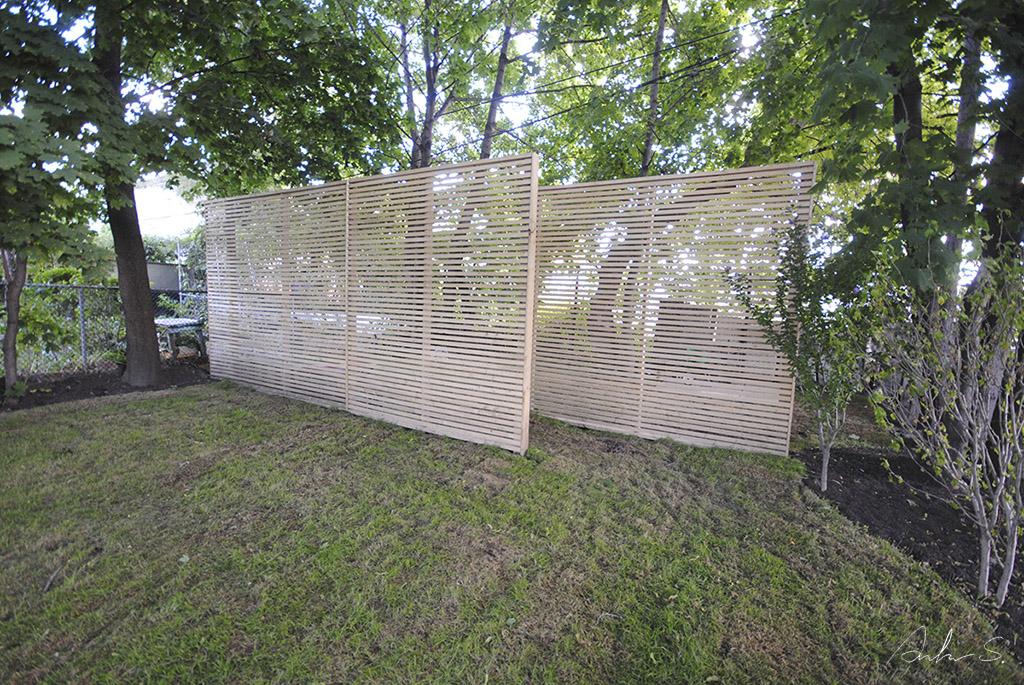 backyard 03